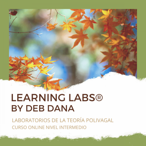 Learning labs - ESPAÑOL-